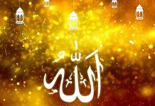 আল্লাহ্ allah নৈকট্য লাভের উপায়